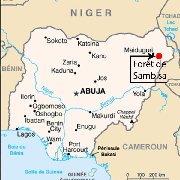 Forêt de Sambisa